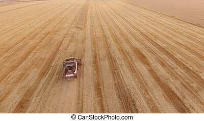 Aerial shot of a combine harvester reaping crops on an agro...