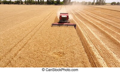 Aerial shot of a combine harvester reaping ripe wheat in...
