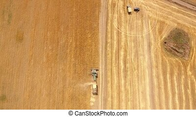 Aerial shot of a combine harvester reaping wheat on a field....