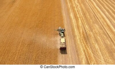 Aerial shot of a combine with a trailer keeping straw on a...