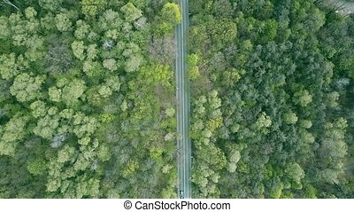 Aerial shot of a forest highway, top down view. 4K video