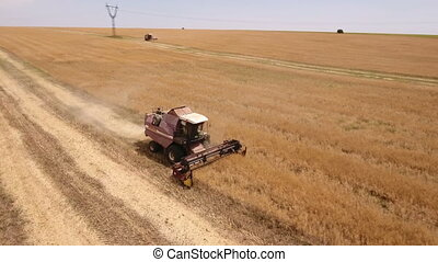 Aerial shot of a gigantic golden field and a combine...