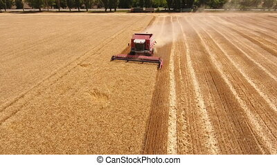 Aerial shot of a hard working combine harvester collecting...