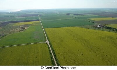 Aerial shot of a highway going through picturesque fileds in Ukraine in spring