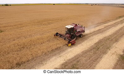 Aerial shot of a huge golden field and a combine harvester...