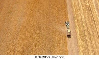 Aerial shot of a laborious combine gathering ripe wheat on a...