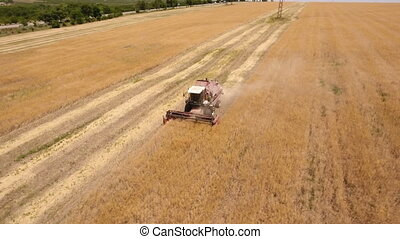 Aerial shot of a laborious combine harvester reaping ripe...
