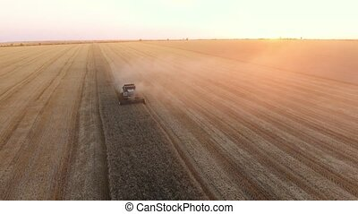 Aerial shot of a laborious combine threshing wheat on a...