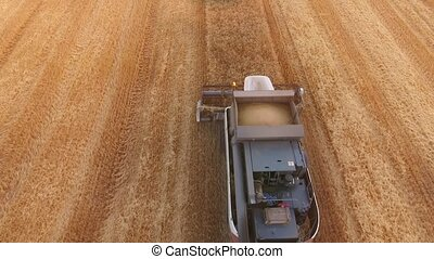 Aerial shot of a large combine reaping wheat on a golden...