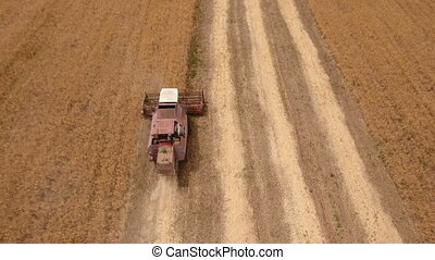 Aerial shot of a large golden field and a combine harvester...