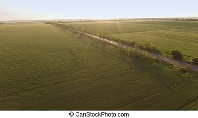 Aerial shot of a lengthy road going thru green agro areas in...