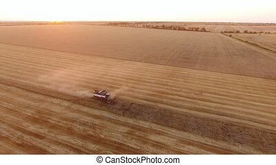 Aerial shot of a modern combine reaping wheat on a striped...