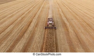 Aerial shot of a modern combine reaping wheat on a yellow...