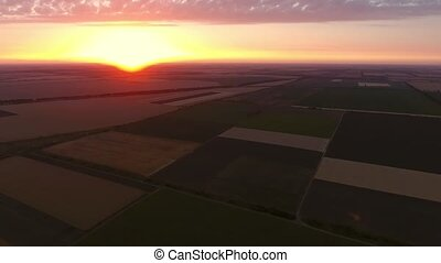 Aerial shot of a multicolored agricultural field at a shining sunset in summer