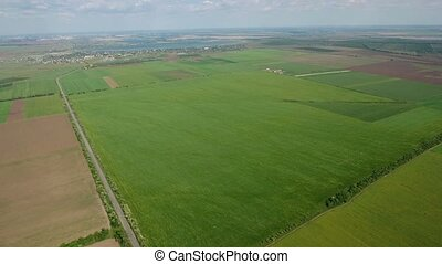 Aerial shot of a multicolored field in Eastern Europe in a late spring