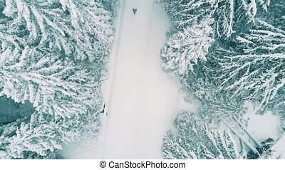 Aerial shot of a person hiking in forest in the snow