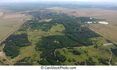 Aerial shot of a picturesque pine forest between spacious agricultural fields