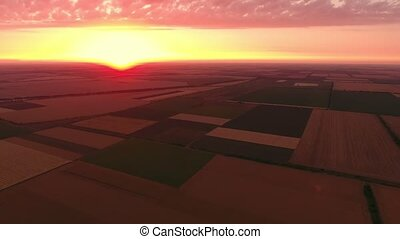 Aerial shot of a pink and yellow sunset over a striped wheat...