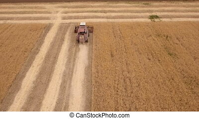 Aerial shot of a ripe golden field and a combine harvester...