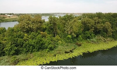 Aerial shot of a small wild islet covered with high trees in...