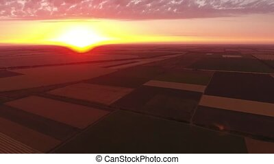Aerial shot of a sparkling golden sunset over a striped wheat field in summer