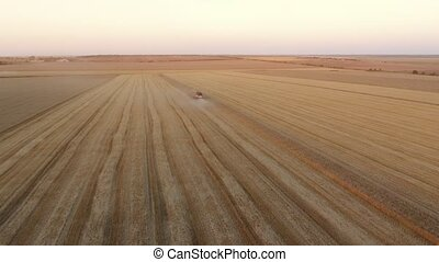 Aerial shot of a splendid striped wheat field and a small...