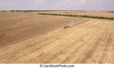 Aerial shot of a wheat field, forest stripe,  and a tractor pulling a harrow