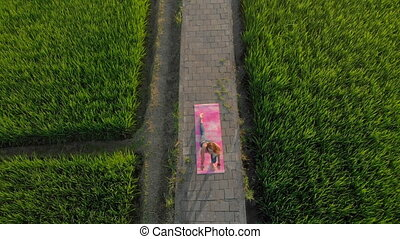 Aerial shot of a young woman practicing yoga on a big beautiful rice field during sunset. Travel to Asia concept.