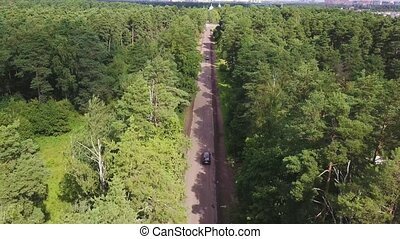 Aerial shot of asphalt road going through green park. Cars move in tree shadow
