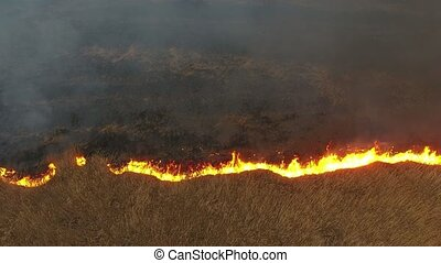 Aerial shot of burning cane and reed marshes in the Dnipro river basin in spring