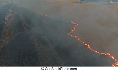 Aerial shot of burning cane and sedge wetland in the Dnipro...