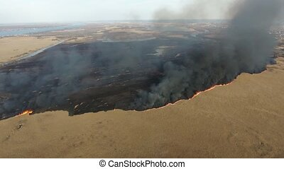 Aerial shot of cane marshes attacked with a firestorm at the...