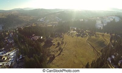 Aerial shot of coniferous forest in the Carpathian mountains, spring