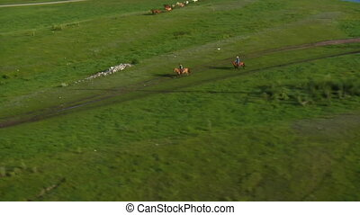 aerial shot of cowboys and horses in Green Valley