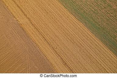 Aerial shot of endless fields in Slavonia, Croatia