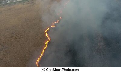 Aerial shot of flaming cane and reed marshes in the Dnipro river basin in spring
