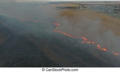 Aerial shot of flaming cane and sedge wetland in the Dnipro...