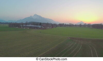 """Aerial shot of green farming field filmed by quadrocopter, beautiful mountains"""