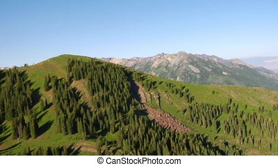 aerial shot of green forest and mountains with trail