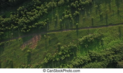 Aerial shot of green woods and fields in Russia