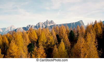 aerial shot of  Italian Dolomites on autumn, down to forest