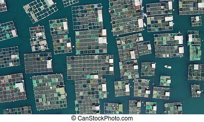 Aerial shot of lots of marine farms in a blue sea water. Sea farming concept.
