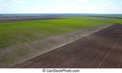Aerial shot of multicolored agricultural fields in Ukraine in a sunny day
