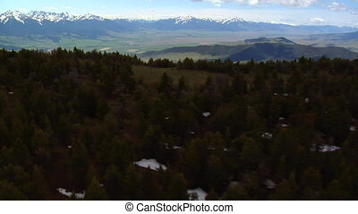 Aerial shot of pines and view in Paradise Valley Montana