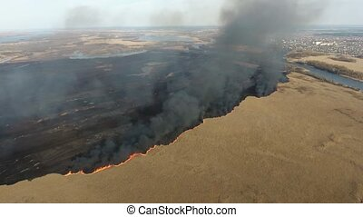 Aerial shot of reed marshes attacked with a wildfire at the...