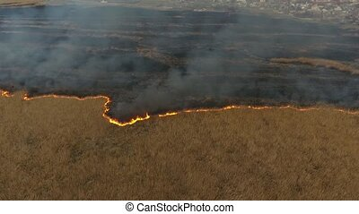 Aerial shot of reed marshes covered with a firestorm in city suburbs in Ukraine