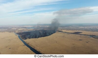 Aerial shot of reed wetland attacked with a firestorm at the...