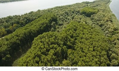 Aerial shot of river islet with trees, inflow at the Dnipro basin in summer
