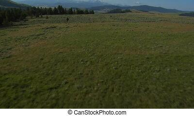 aerial shot of sagebrush pastureland with mountains