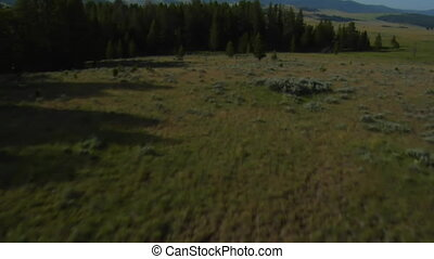 aerial shot of sagebrush pastureland with mountains